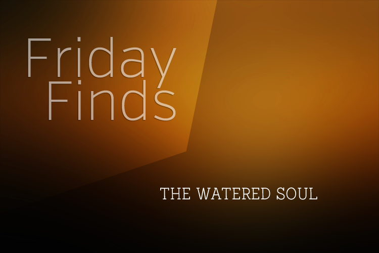 Favorite Friday Finds | The Watered Soul