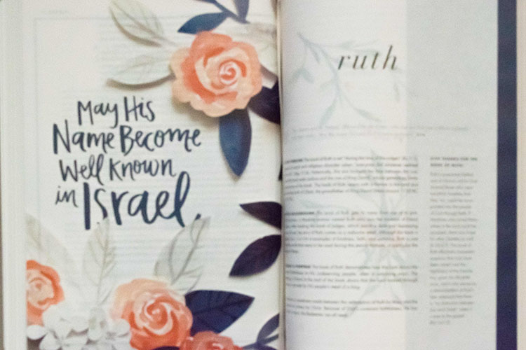 Bible Review | She Reads Truth Bible